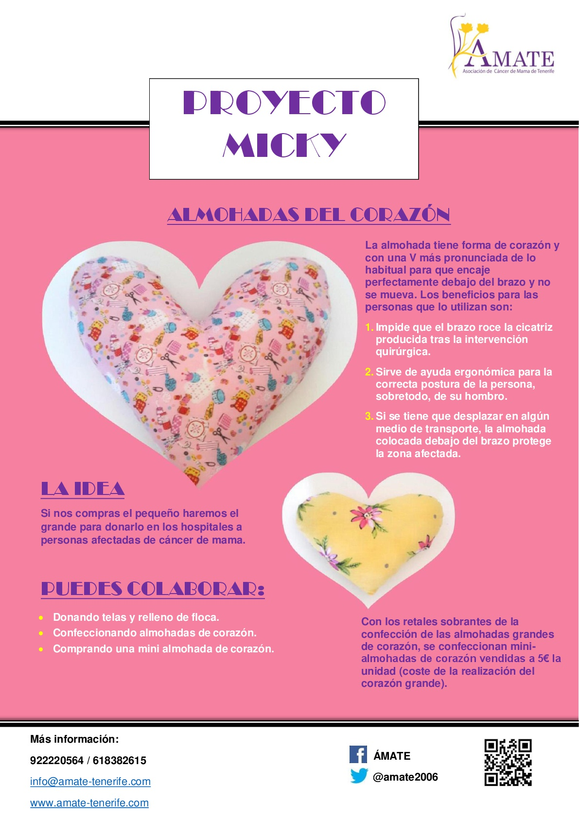 Cartel Proyecto micky-001