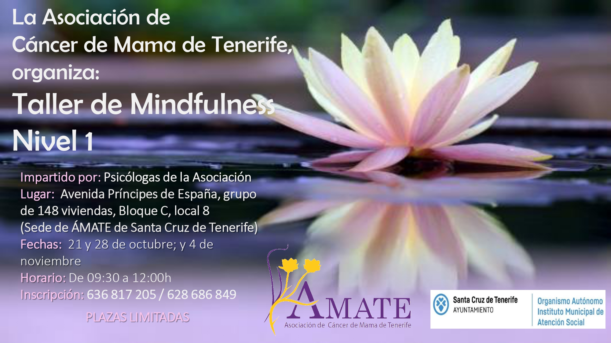 00 taller mindfulness sc_page-0001