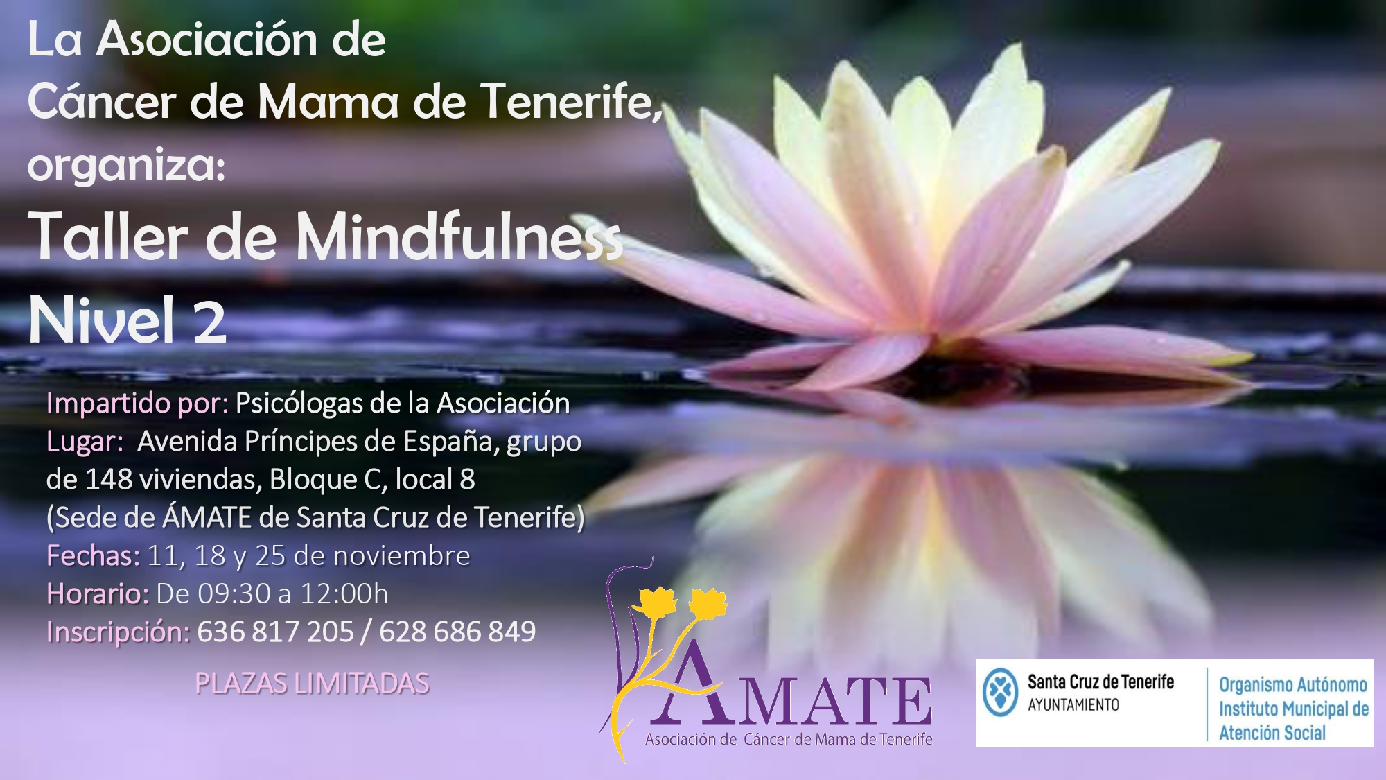 00 taller mindfulness sc_page-0002